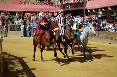 Travel around with me to the Palio in Siena. This photo is made by the morning prove in July 2013!