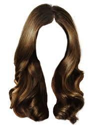 Картинки по запросу hair isolated