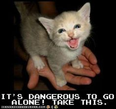 I <3 old RP games!  And I would seriously dig one that required me to take a kitten along.  #Lolcats