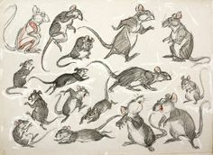 'Shorty' by Preston Blair, (American 1908-1994),  ★ || CHARACTER DESIGN REFERENCES (www.facebook.com/CharacterDesignReferences & pinterest.com/characterdesigh) • Love Character Design? Join the Character Design Challenge (link→ www.facebook.com/groups/CharacterDesignChallenge) Share your unique vision of a theme every month, promote your art and make new friends in a community of over 20.000 artists! || ★