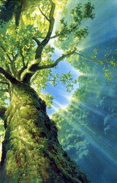 Image may contain: tree, plant, sky, outdoor, nature and water Fantasy Landscape, Landscape Art, Natur Wallpaper, Tree Wallpaper, Anime Scenery Wallpaper, Tree Art, Nature Pictures, Beautiful Pictures, Belle Photo
