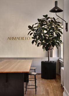 Armadillo New York City Showroom Photography: Claire Esparros Brisbane, Melbourne, Armadillo, Indoor Plants, Showroom, Living Spaces, Claire, York, City
