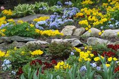 Garden Landscaping - Rock gardens bring mountain-inspired beauty to your backyard. This article will give you all you need to know to plan a rock garden, including advice on planting, building, and caring for rock gardens. Landscaping With Rocks, Landscaping Tips, Garden Landscaping, Garden Images, Garden Pictures, Rockery Garden, Xeriscaping, Alpine Garden, Rock Garden Design