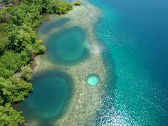 boca del toro | Bocas del Toro - Caribe e Fotos | Espaço Turismo