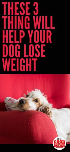 Weight loss juice diet plan