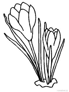 Flowers coloring page 104 Line Drawing, Drawing Sketches, Drawings, Spring Flowers, Colorful Flowers, Hand Embroidery, Embroidery Designs, Coloring Books, Coloring Pages