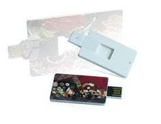 Business Card USB Pen Drives (CF-C11) - China All In One USB Card Reader;Card USB Drive;Credit Card USB Memory, CFECH