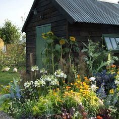 Garden Cottage, Home And Garden, Prairie Garden, Allotment Gardening, Organic Gardening, Allotment Shed, Potager Garden, Urban Gardening, Hydroponic Gardening