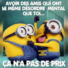 les minions - Page 21 Minions Images, Minions Quotes, Funny Cute, Hilarious, Funny True Quotes, Inspirational Words Of Wisdom, French Quotes, Memes, Haha