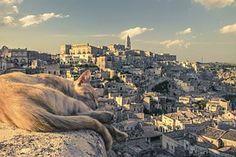 Katze, Stadtansicht, Matera, Italien, Sonnenuntergang