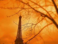 Eiffel In Orange