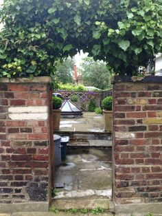 view into garden, Hampstead, London
