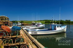 At The French River Wharf Photograph