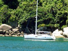 Ilha do Arvoredo - Florianópolis- SC