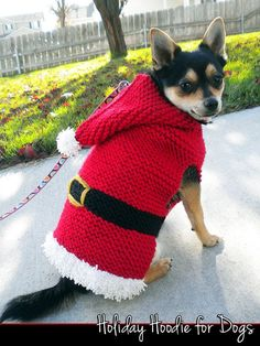 Holiday Hoodie for Dogs Knitting Pattern Crochet Dog Sweater, Crochet Beanie Hat, Booties Crochet, Crochet Hats, Knitted Baby, Dog Sweaters, Cute Sweaters, Holiday Sweater, Ugly Christmas Sweater