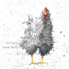 Curious Hen by Hannah Dale SIGNED PRINT