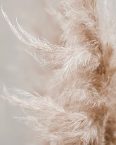 Urban Love / Modern and minimal wedding decoration - - Cream Aesthetic, Brown Aesthetic, Aesthetic Backgrounds, Aesthetic Wallpapers, Art Texture, Textile Texture, Love Decorations, Decor Ideas, Diy Ideas