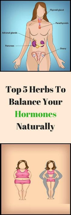 Hypothyroidism Diet - Top 6 Herbs To Balance Your Hormones Naturally – Multi Super Magazine Thyrotropin levels and risk of fatal coronary heart disease: the HUNT study. Health And Beauty, Health And Wellness, Health Tips, Health Fitness, Women's Health, Health Recipes, Health Benefits, Natural Treatments, Natural Cures
