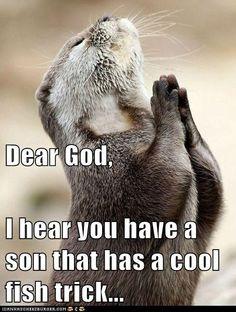 Otter love him...