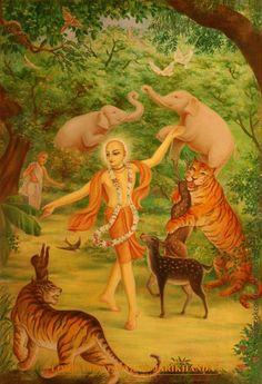 .Chaitanya lila Jarikhanda Forest.