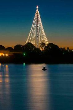 Christmas in Sea World , San Diego , .....