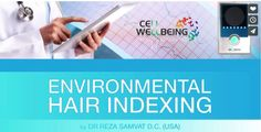 Environmental Hair Indexing  More Info @