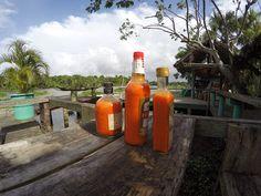 Orinoco Delta Lodge, Venezuela - Google+