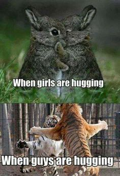 24 best Funny Memes images & Hilarious Pictures If you're having a hard week. We know that the world is strange, but cute funny memes cat and funny pictures Funny Animal Jokes, Cute Funny Animals, Funny Animal Pictures, Cute Baby Animals, Funny Dogs, Animal Puns, Hilarious Pictures, Cute Animal Humor, Funny Bunnies