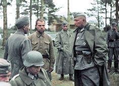 Офицер 16-й армии вермахта допрашивает пленного красноармейца с помощью переводчика . Немецкая группа армий «Север».