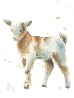 Baby Goat farm animal print of my watercolor by TheDailyWatercolor