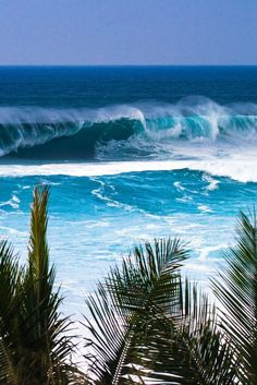 The thing that is first do every morning is go online to check the surf. If the waves are good, I'll go surf. Sea And Ocean, Ocean Beach, Ocean Waves, Ocean Photos, Blue Beach, Oahu Hawaii, Hawaii Ocean, Hawaii Waves, Beautiful Islands