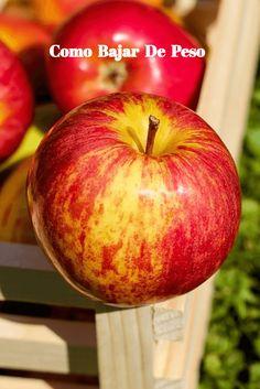 Los batidos de frutas y verduras pueden Ser Una deliciosa Opción para  Aportar a tu salud los Nutrientes ESENCIALES, y lograr bajar de peso.