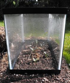 Mini Greenhouses with Fish Tanks - Crafty Little Gnome- An old fish tank seems to be one of those random objects everyone has buried under a pile of junk in their garage. At one point you or your kids have probably had a fish tank with some cut Hay Bale Gardening, Container Gardening, Home Greenhouse, Homemade Greenhouse, Greenhouse Ideas, Plant Needs, Seed Starting, Building A Deck, Farm Life