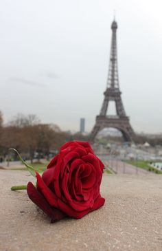 Paris - 'City of Love'