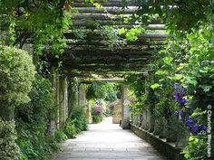 Hever Castle boasts one of the best pergolas in Britain l The Galloping Gardener: Galloping Gardener Walks© Three glorious castle gardens in Kent