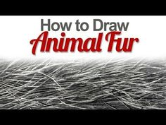 How to Draw Animal Fur by The Virtual Instructor  - Drawing Technique