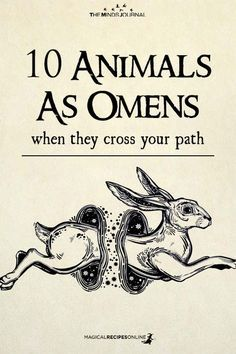 10 Animals As Omens When They Cross Your Path Magick Spells, Wicca Witchcraft, Healing Spells, Healing Quotes, Animal Spirit Guides, Spirit Animal, Paz Mental, Baby Witch, Spiritus
