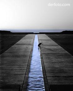 Salk Institute  La Jolla, Ca. 2012  www.derfoto.com  Fred Castillo  Sony A55