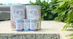 Yoli Better Body Scheme – Healthy Nutrition and Weight Management?