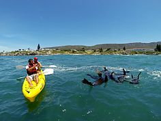 View a list of kayaking operators in Hermanus, South Africa - Dirty Boots Adventure Activities, Adventure Tours, Whale Watching Season, Kayak Adventures, Down The River, Charter Boat, Kayaking Trips, Amazing Adventures, Rafting