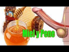 efectos de la cebolla en el pene (lo que no sabias) - YouTube