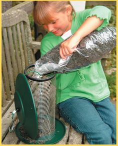 Kids can feed wild birds, too! Learn more about helping to feed the birds.