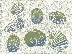 ONLY ONE LEFT Relief Print  My Shell Collection  von magprint, $50.00