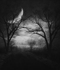 psycho path