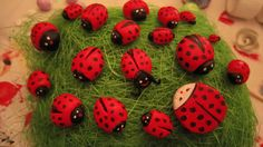air dry clay (ladybugs)