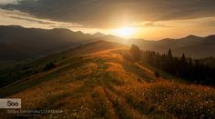 by PolyushkoSergey. Please Like http://fb.me/go4photos and Follow @go4fotos Thank You. :-)