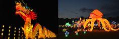 Twin Cities Premiere – Lantern Light Festival Opens Tonight