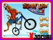 Poker, Scooby Doo, Bicycle, Beach, Bicycle Kick, Bike, Bicycles