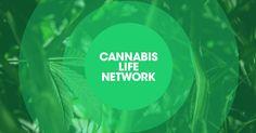 PUF Ventures appoints Peter Karroll as Director of Branding & Marketing - Cannabis Life ...