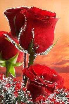 Beautiful Flowers Wallpapers, Beautiful Rose Flowers, Fractal Art, Fractals, Happy Birthday Cake Images, Good Morning Images, Flower Wallpaper, Happy Anniversary, Art Drawings